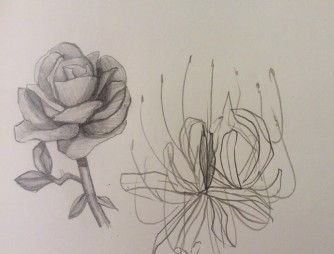 """""""Untitled"""", Casey Fredrick, Pencil on paper, 2017. Chapter 2 talked about making sense of art and how it's all around us. So I drew something that I've always drawn and what makes sense to me- a flower. A flower is a simple thing that looks easy to draw, but can be very difficult due to so many pedals and each flower being so different."""