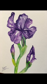 Lilly , by Josephine Tonn, 7.5x10, watercolor on paper.
